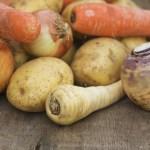 VIVRE_Légumes racine_c100