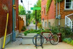 Vers une centième ruelle verte dans Rosemont–La Petite-Patrie