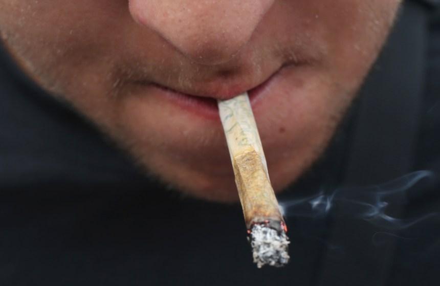 Chaudes luttes sur fond de légalisation du cannabis