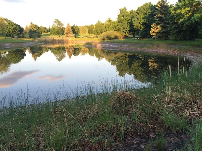 Le parc Ahuntsic pourrait devenir le parc Maurice-Richard