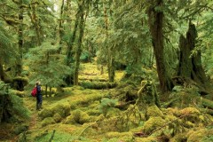 Colombie-Britannique: un séisme de 6,2 secoue l'archipel Haida Gwaii mercredi