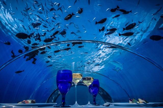 Le plus grand restaurant sous-marin ouvrira bientôt ses portes aux Maldives