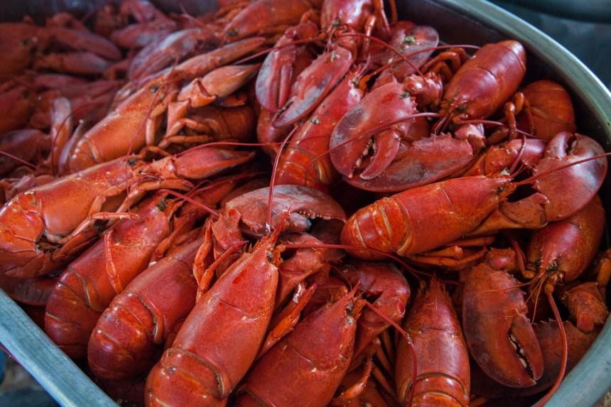 Fondation des gens d'affaires et des industries de la Pointe-de-l'Île: un souper de homard qui répond à des besoins importants