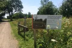 40% des travaux complétés au Parc-Nature de la Pointe-aux-Prairies
