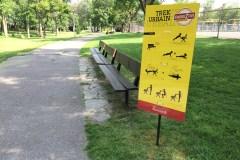 Ahuntsic-Cartierville lance le trekking urbain dans ses parcs