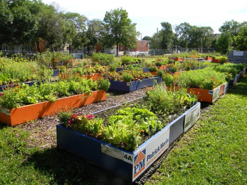 Le jardin des Nations: un projet «inclusif» innovant
