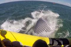 Une baleine fait peur à des touristes à Tadoussac