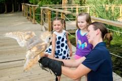 Trois parcs animaliers proche de Montréal