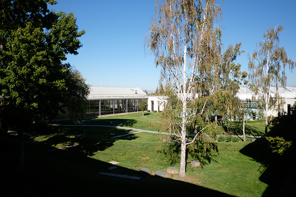 cour-interieure