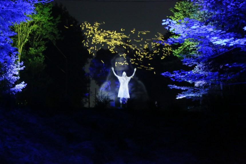 SXSW: le Québec illuminé de Moment Factory