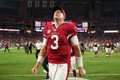 Panthers et Cardinals, les déceptions de l'année