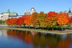 Où apprécier les couleurs d'automne à Montréal