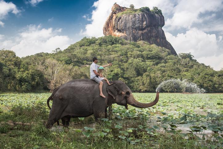 TripAdvisor dit non aux randonnées à dos d'éléphant