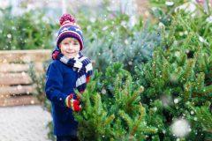 Où acheter un vrai sapin de Noël à Montréal?
