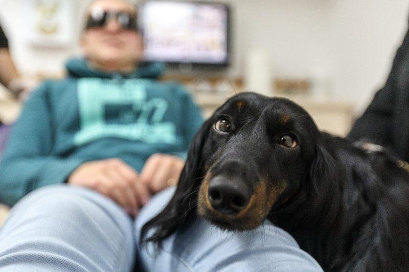 Une assistante dentaire qui a du chien