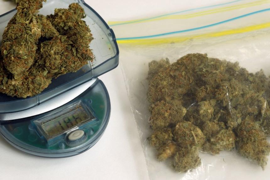 Cannabis: au moins 62 000 kilos pour la SAQ