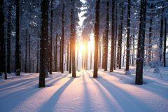 Solstice d'hiver le 21 décembre: la journée la plus courte