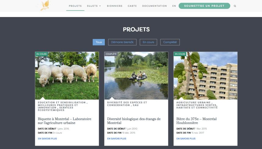 Un portail internet pour la biodiversité montréalaise