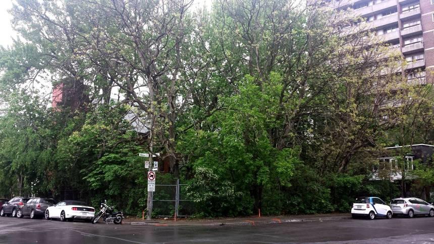 Manifestation pour conserver le Jardin Notman