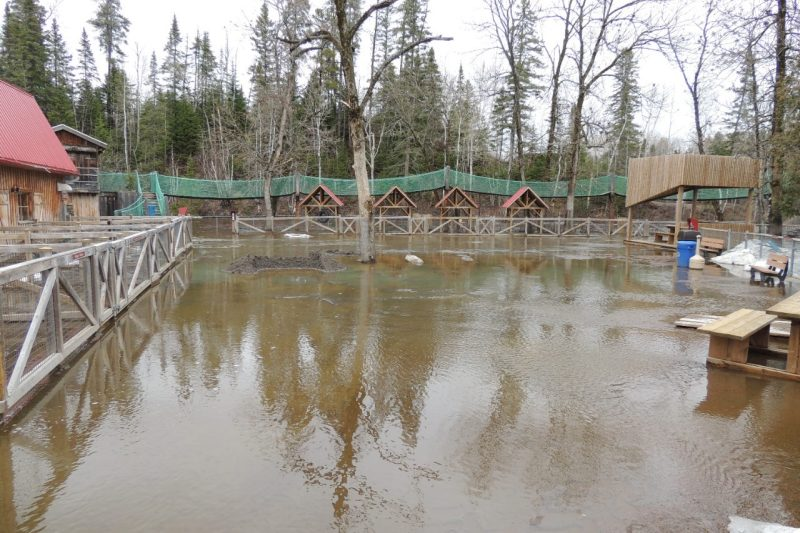 Inondations: un secteur du Zoo de St-Félicien évacué