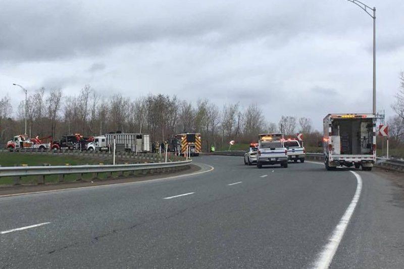 Accident impliquant des vaches sur l'autoroute 55