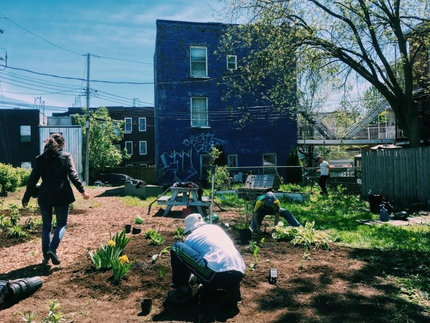 Un nouvel outil pour embellir les espaces vacants