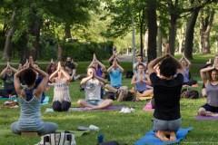 Le yoga à bas prix annulé dans le parc La Fontaine