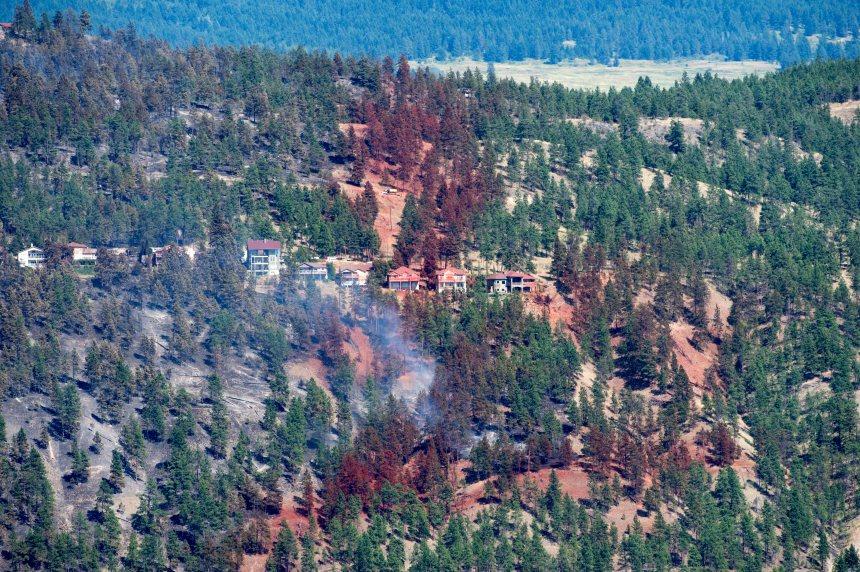 Quelques données sur les feux de forêt en Colombie-Britannique