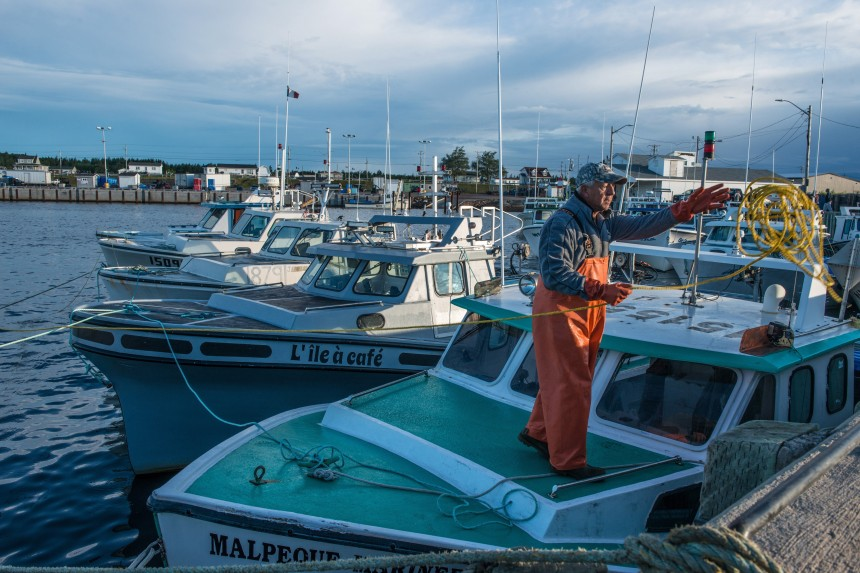 Les pêcheurs de homards sont furieux au Nouveau-Brunswick