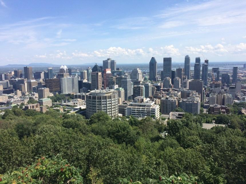 Montréal veut cinq nouvelles écoles au centre-ville
