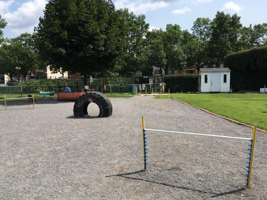Un nouveau parcours d'agilité au parc canin de Sault-au-Récollet