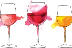Comprendre le vin végane