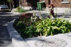 Une étude démontre l'efficacité des saillies de trottoir