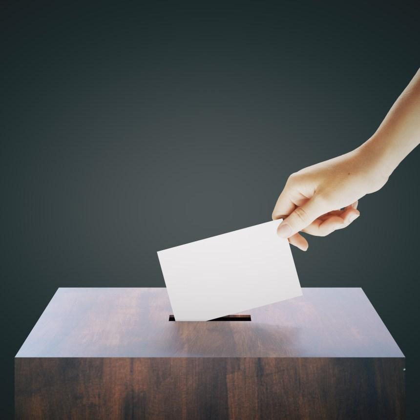 La communauté des affaires veut convaincre les jeunes de voter aux élections provinciales