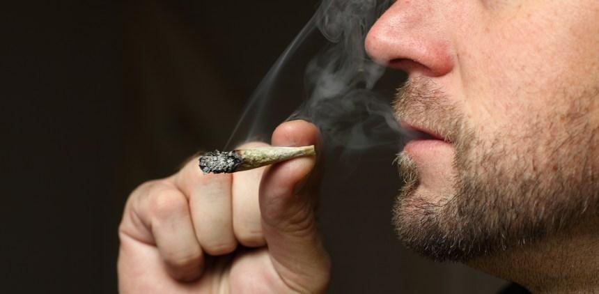 Encadrement strict du cannabis à Ville Mont-Royal
