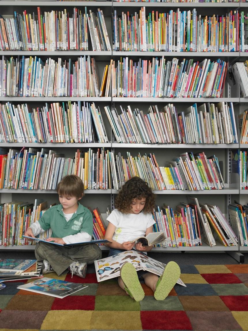 Dans la bibliothèque des jeunes lecteurs