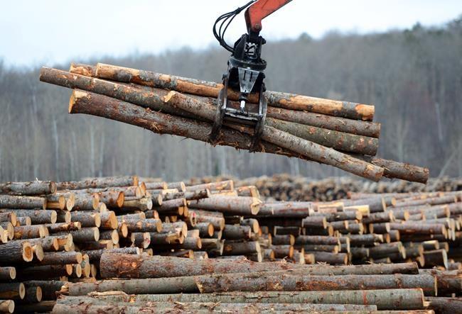 Bois d'oeuvre: le Canada se tourne vers l'OMC