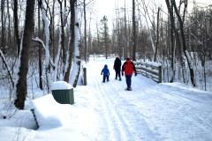 Les parcs montréalais s'activent même en hiver