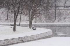 Montréal veut faire du parc La Fontaine son «Jardin du Luxembourg»