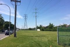 Terrains municipaux: la CSPÎ refuse les propositions de la Ville de Montréal
