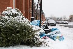 Un meilleur sort pour votre arbre de Noël