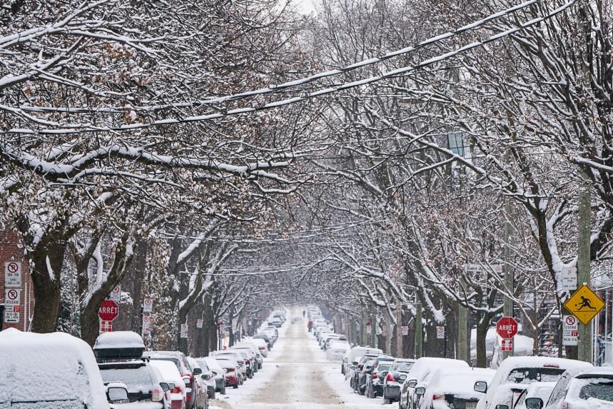 La région de Charlevoix pourrait recevoir jusqu'à 80 centimètres de neige