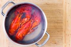 La Suisse légifère pour protéger les homards