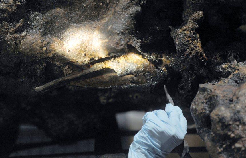 Un musée dit possèder les os du pirate Sam Bellamy