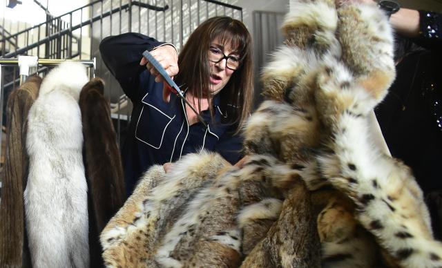 San Francisco devient la plus grande ville américaine à interdire la fourrure