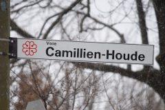 Montréal étudie le retour du sens unique en alternance sur la voie Camillien-Houde