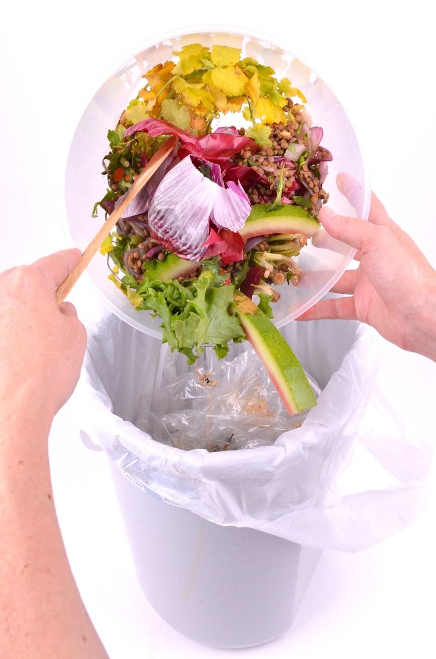 Le vrai du faux sur les sacs compostables