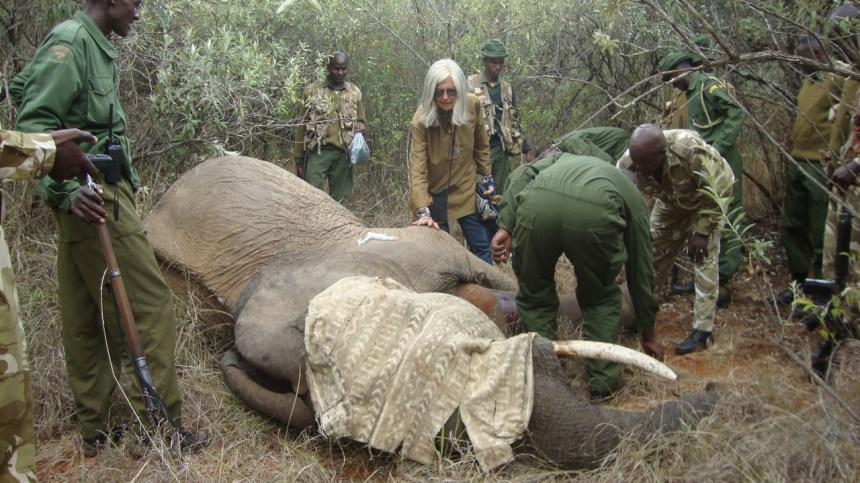 Kuki Gallmann: «J'ai risqué ma vie pour sauver mon Afrique»