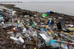 Jour de la Terre: Le fléau du plastique