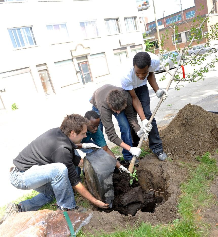 Le Plan local de développement durable présenté